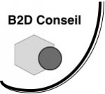 Logo B2D gris